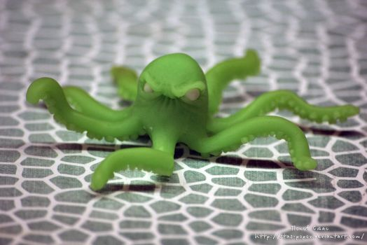 Octopus (Img 4943 1) by Stas-Popov