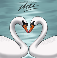Swans Mate For Life by Most-High-Studios