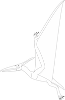 Pteranodon base by Daizua123