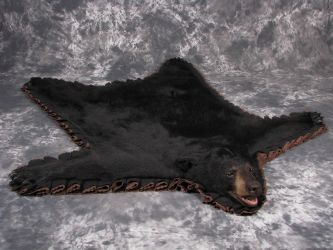 Black Bear Rug with Panting Mouth by DiamondDustTaxidermy