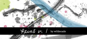 Paint v.1 by wildecade
