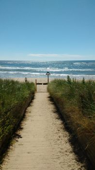 Beach walkway in my Village this morning by mr-macd
