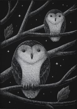 Two-owls-with-stars by RustyScratchy