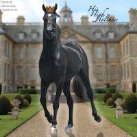 HEE Horse Avatar. - His High Holiness by Prince-Studios