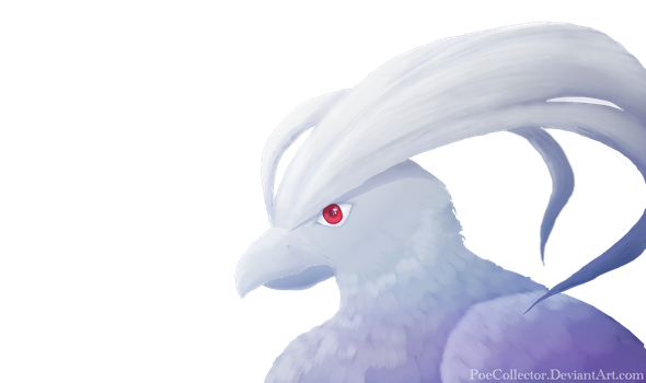 Albino by PoeCollector