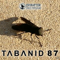 Oviraptor Space Program - Tabanid 87 Track Art by MicrocosmicEcology