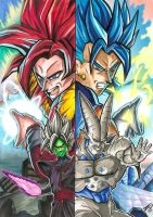 Super Saiyan Fusions by eksdeth