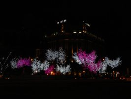 Xmas Eve's lights in Madrid by Curri-chan
