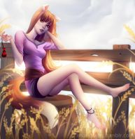 Spice and Wolf by cosmogirll