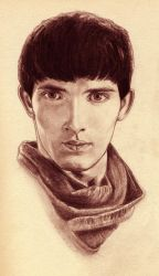 Merlin by theresebees