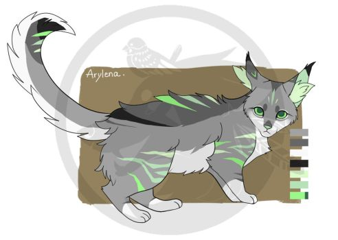 Kardel Reference by Arylena