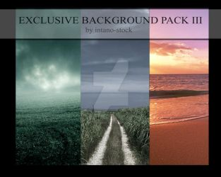 EXCLUSIVE BACKGROUND III by intano-stock