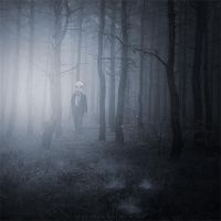 Dreaming forest by Alshain4