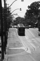 The Streetcar Near Neville Park Loop by Neville6000
