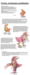 Realistic Pokedex. Entries 255, 256, 257 by wietse110