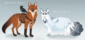 Dhole and Marble Fox ADOPT AUCTION (closed) by Imaginary-Rat