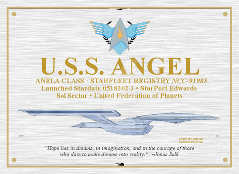 Starship Angel Plaque by Lucario-Stl