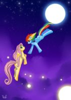 Rainbow Dash x Fluttershy - Fly to you by firstsky