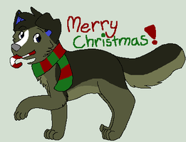 Merry Christmas, Casey! by hoqwarts