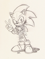 Commission 3 : Sonic by ThePandamis