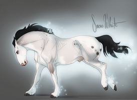 X2254 Snowhite by NorthEast-Stables