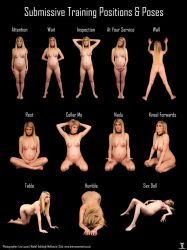 Submissive Pose Chart - Ashleigh McKenzie by LexLucas