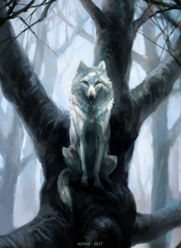 The Wolf Who Sat in a Tree by Kipine
