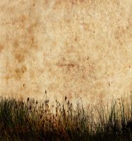 Textured Background 7 by FairieGoodMother