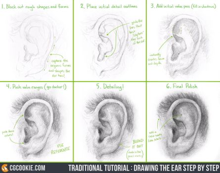 Tutorial: Drawing the Ear Step by Step by CGCookie