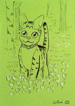 Kitty on the cloverfield by land3