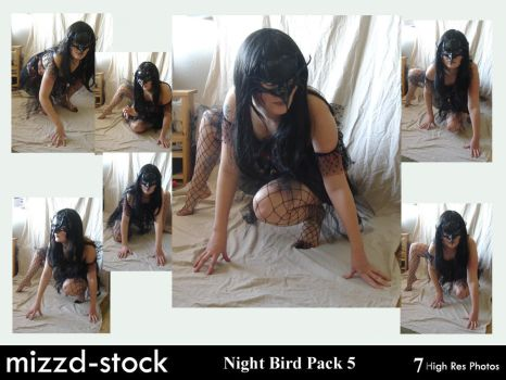Night Bird Pack 5 by mizzd-stock