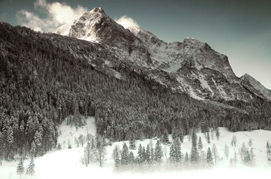 The Alps Winter 2007 II by mutrus
