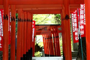 Through the Torii by verseless