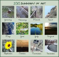 2010 Summary of Photography by InuHalfDemon