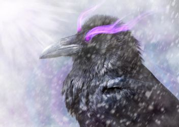 Three-Eyed Raven by Dessins-Fantastiques