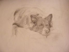 Resting Place - Mid-sketch1 by Dandy-L
