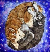 Goodnight Huskies by Woodenbullet