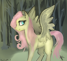 Fluttershy by 0Pencil0and0Rood0