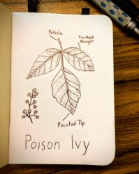 Inktober 1: Poison Ivy by vt2000