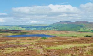 Sunlit moorland and reservoir by ahappierlife