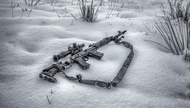 SVD in the snow. by Profail