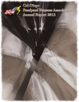 Annual Report 2012 cover by alpha-dragon