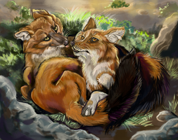 Fauna Focus Dhole Pair by Shadowind