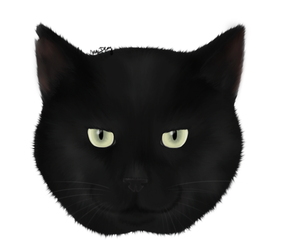 Our black cat Samuel by GamingCatsStudio