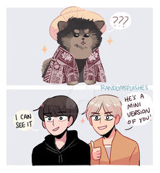 BTS: DRESSING UP AS A MEME by Randomsplashes