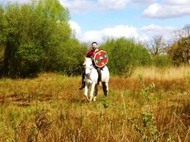 Germanic warrior on horse by Dewfooter
