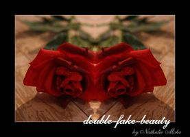 double-fake-beauty by dieZera