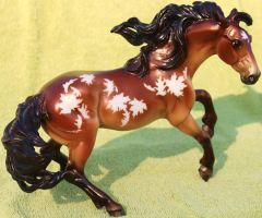 Breyer Nokota Horse - Fall in Love Stock 1 by Lovely-DreamCatcher