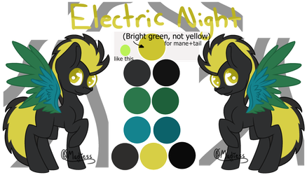 Electric Night refrence sheet By Madiess updated by ElectricNight22