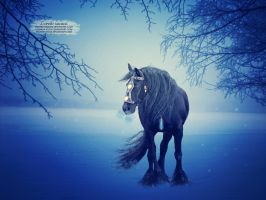 Winter Air by pisaries-designs
